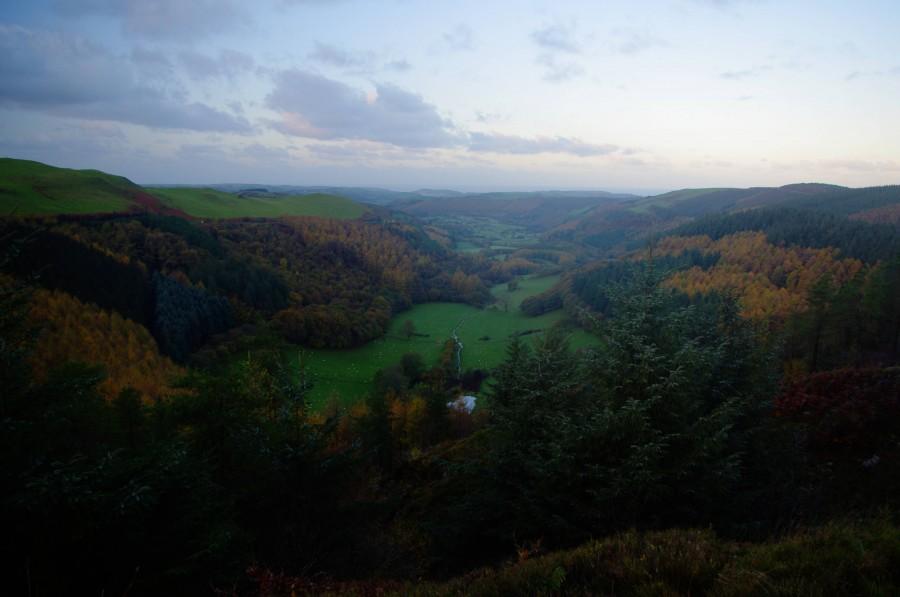 Morning on the Rheidol Valley, Wales [4288×2848][OC]