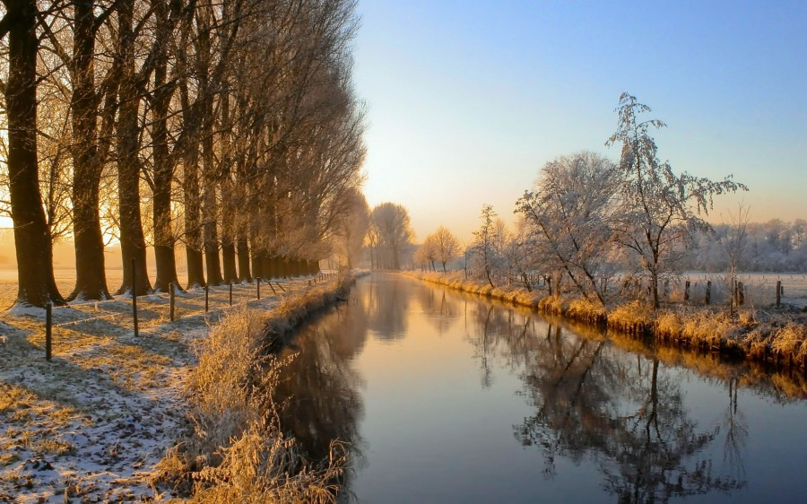Morning Frost at the River [1920×1080]