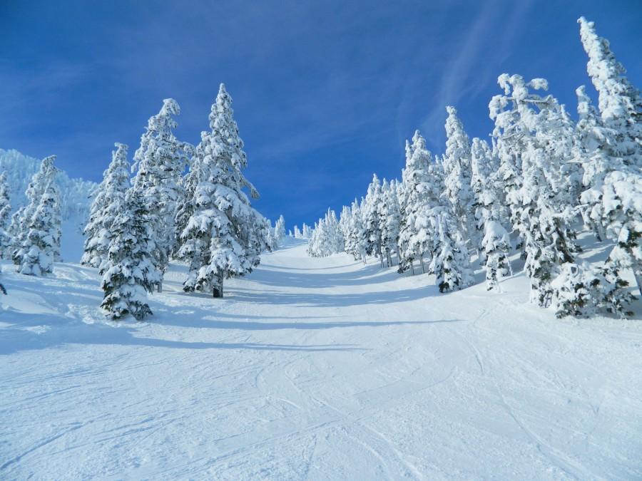 The slopes at Eaglecrest, AK [1280 x 720]