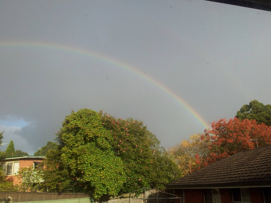 Looked out the window and saw this beautiful double rainbow [3264×2448]