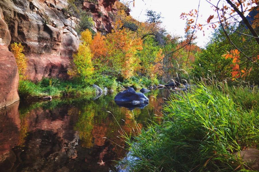 Oak Creek Canyon, Sedona — taken yesterday [OC] [3216×2136]