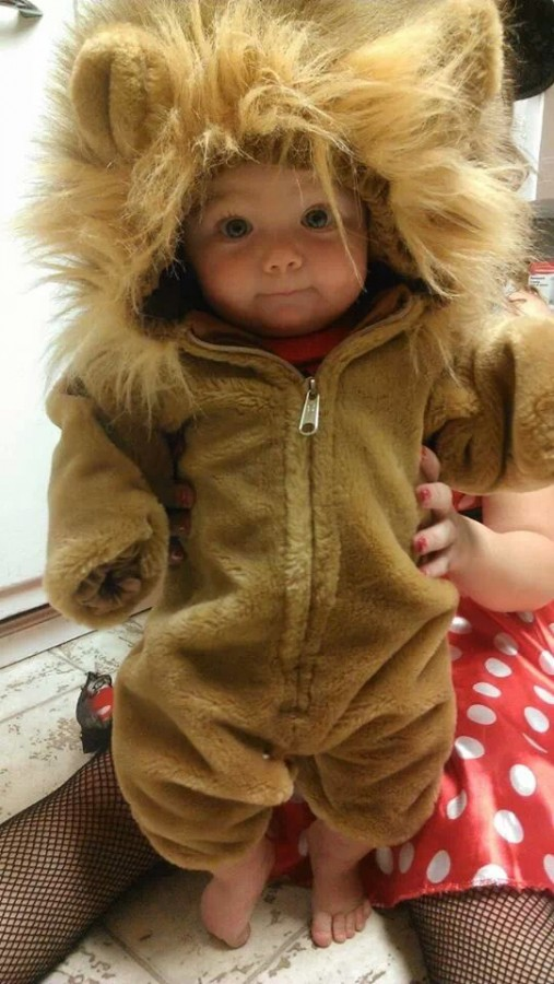 My nephew is the fiercest lion I know. ♡