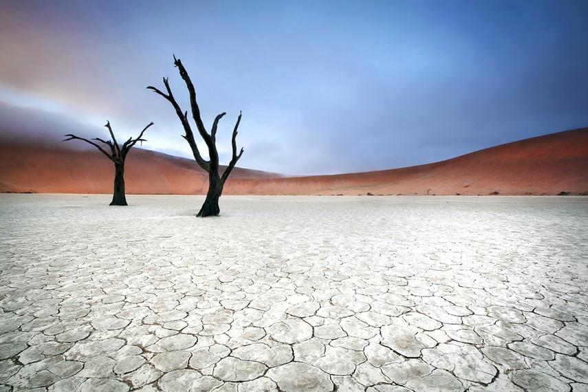 Sossusvlei, Namibia [855 x 570] (x-post /r/pics)