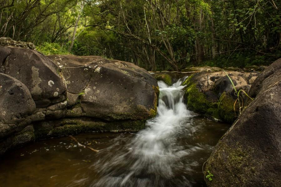 Waterfalls in Kapaa, Kauai, HI [5184×3456] [OC]