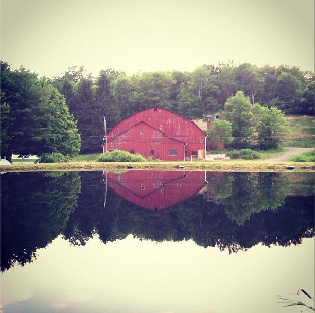 Natural Reflections, Hunlock Creek, PA [612px × 608px] [OC]