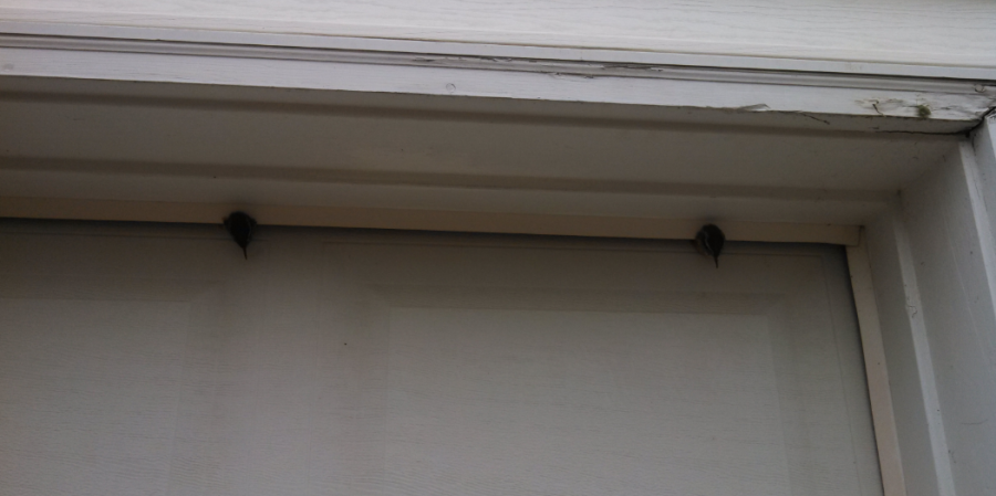 Got back from a business trip and noticed that the wife had closed the garage door which had I left open. I also noticed something else