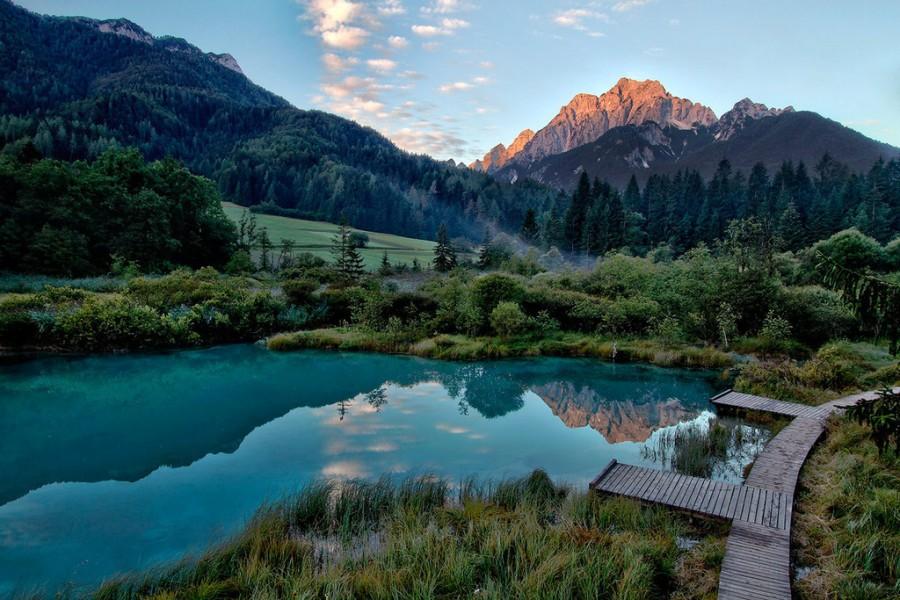 Zelenci, Slovenia [1024×683]
