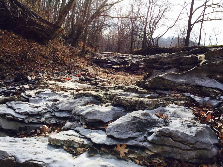River bed Arkansas [3264×2449] [os]