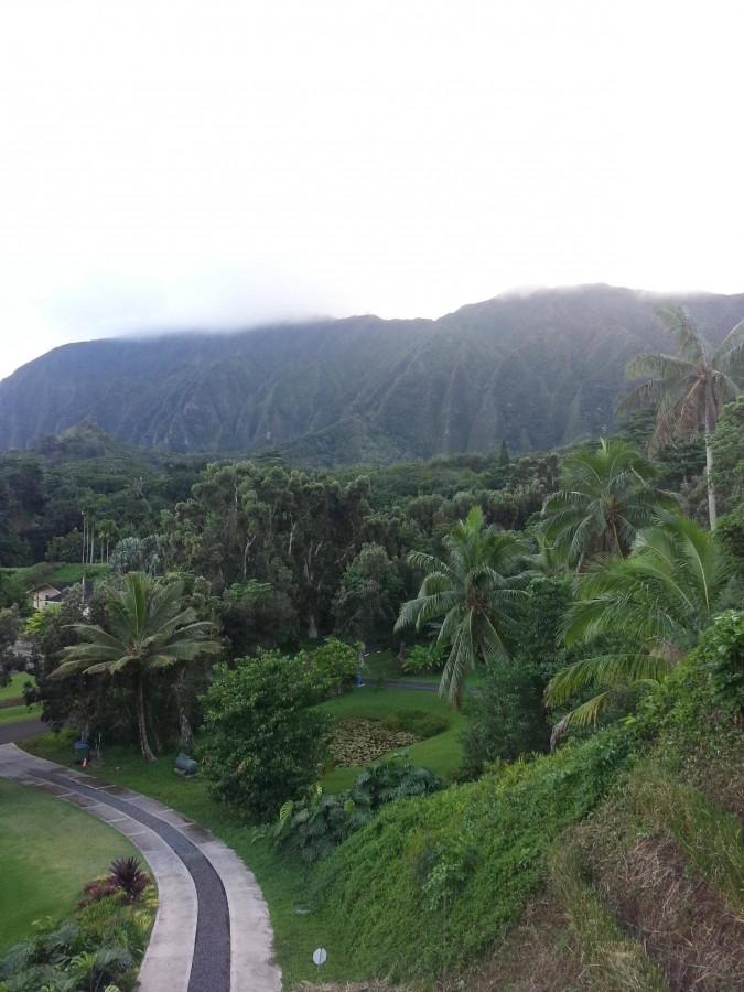 Cliffs in Oahu, Hawaii (3264×2448)