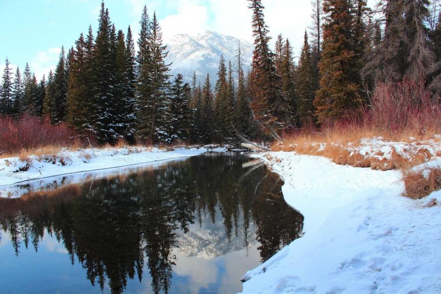 Just a short walk from my house. Banff, Alberta [5184×3456][OC]