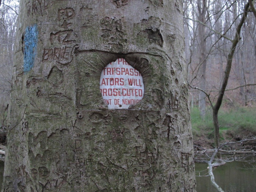 Don't trespass on nature. Nature wins in the end.