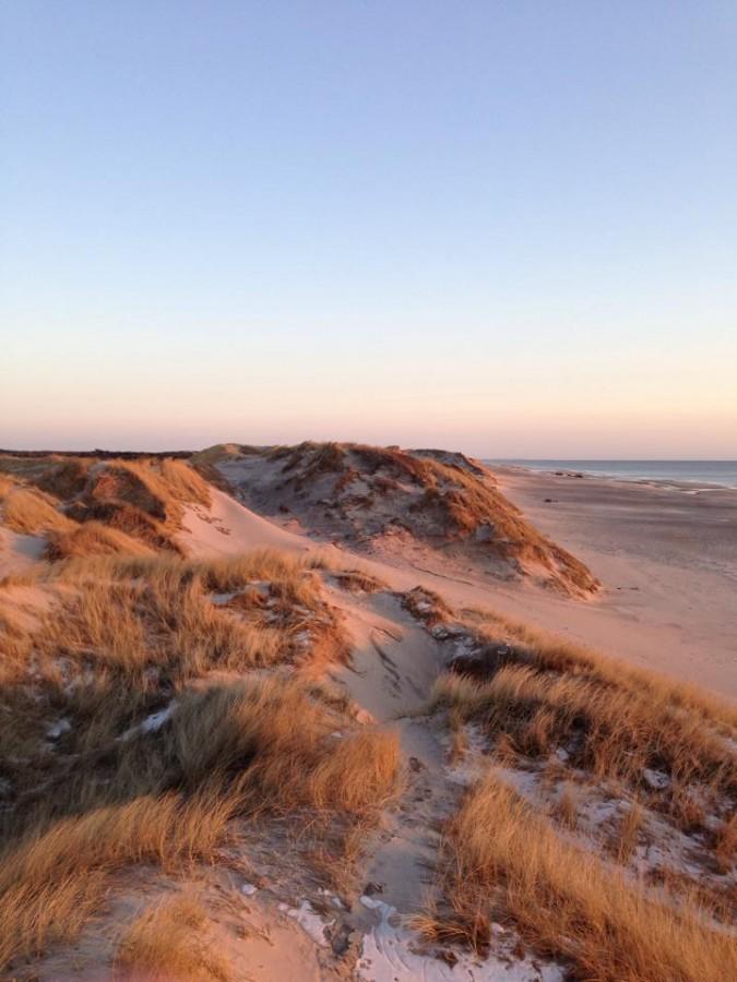 The dunes of Fjand, Denmark [720×960]