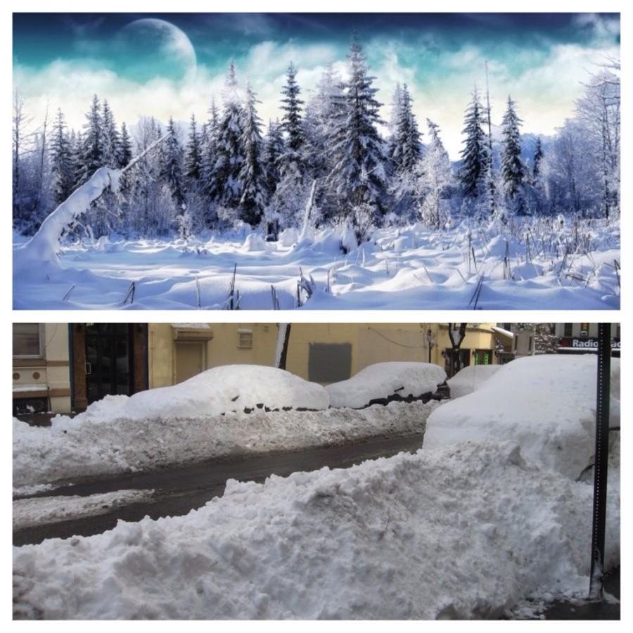 Top: what snow looks like to a southerner Bottom: what snow looks like to a northerner