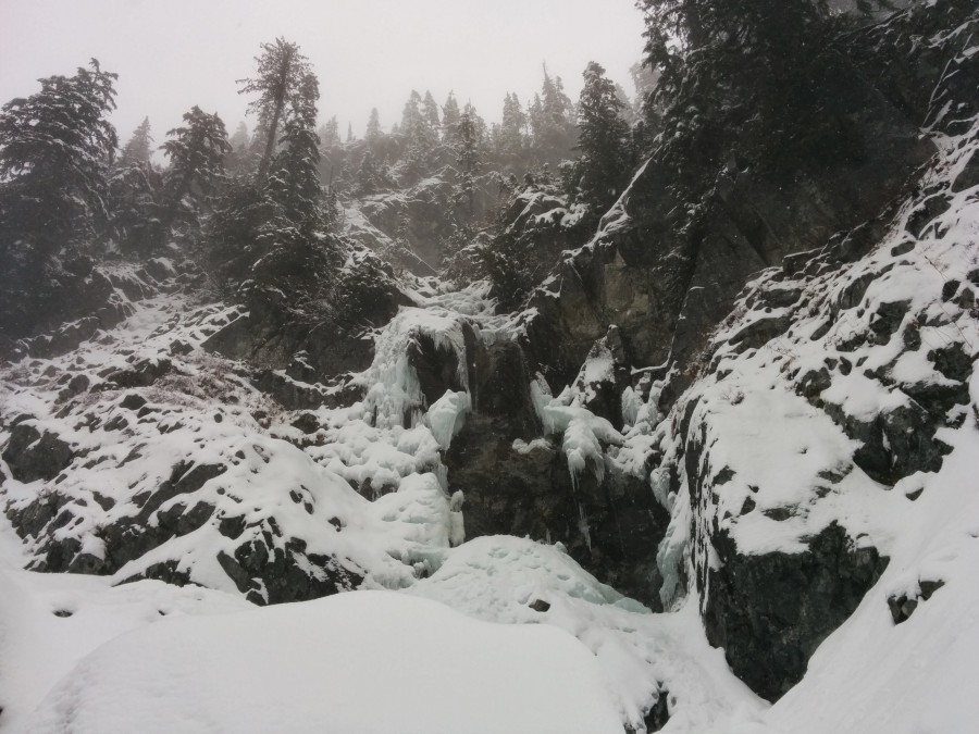Somewhere on the Snoqualmie Mountain in classic Cascades weather [3264×2448]