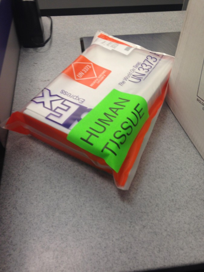 Why yes, FedEx, I am confident this is not my Christmas package…