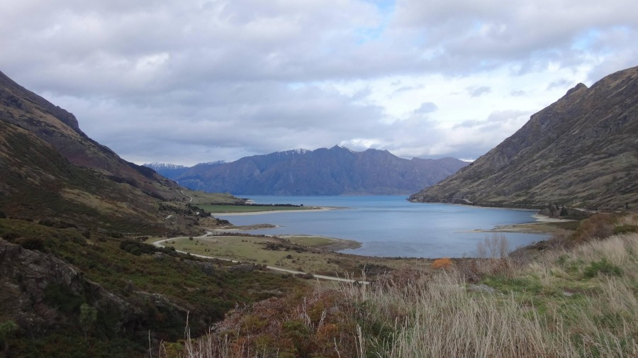 Snapped this on our way to Queestown, New Zealand [4900×2800]