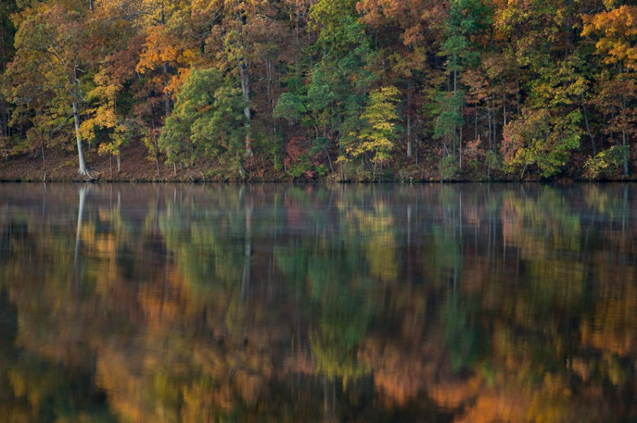 Lake Johnson Reflection – Raleigh, NC [OC] [950×633]