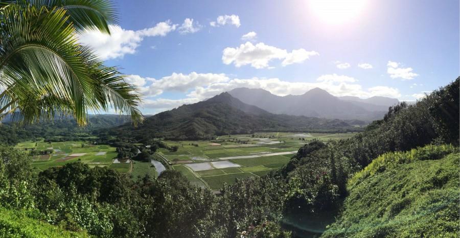 Hanalei Valley Lookout, Kauai [OC] [2970×1536]