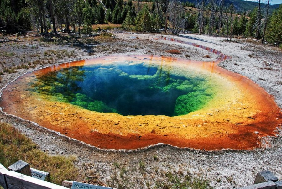 A beautiful pool in Yellowstone National Park. [1011×678]