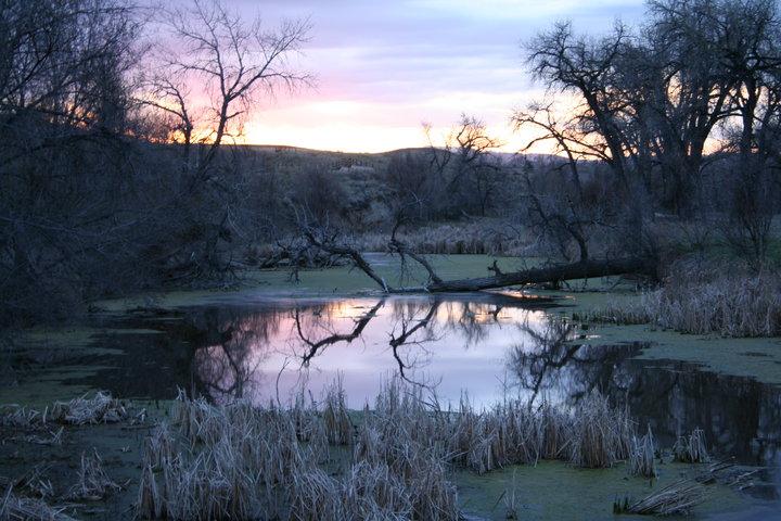Poudre Trail, Colorado (OC) [720×480]