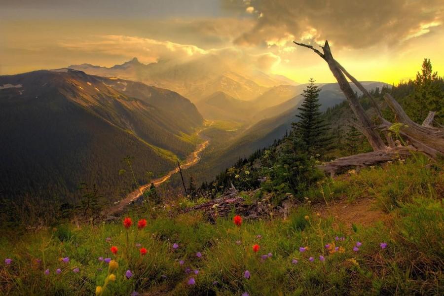 Mount Rainier, Washington State (1000×667)