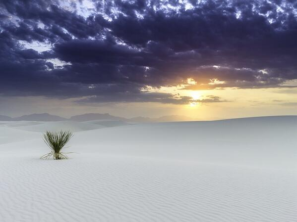 White Sands Of New Mexico[599×499]