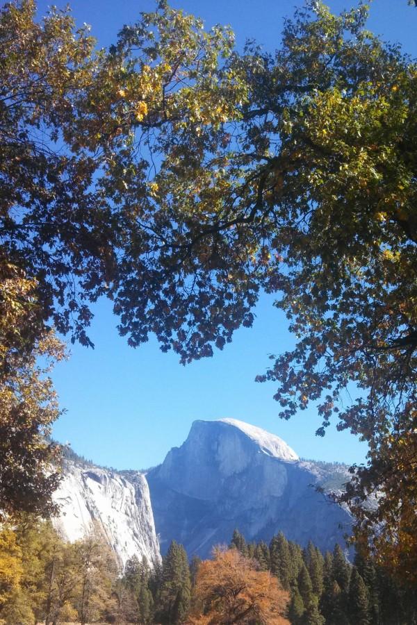 Half dome in Yosemite National Park [1836×3264](OC)