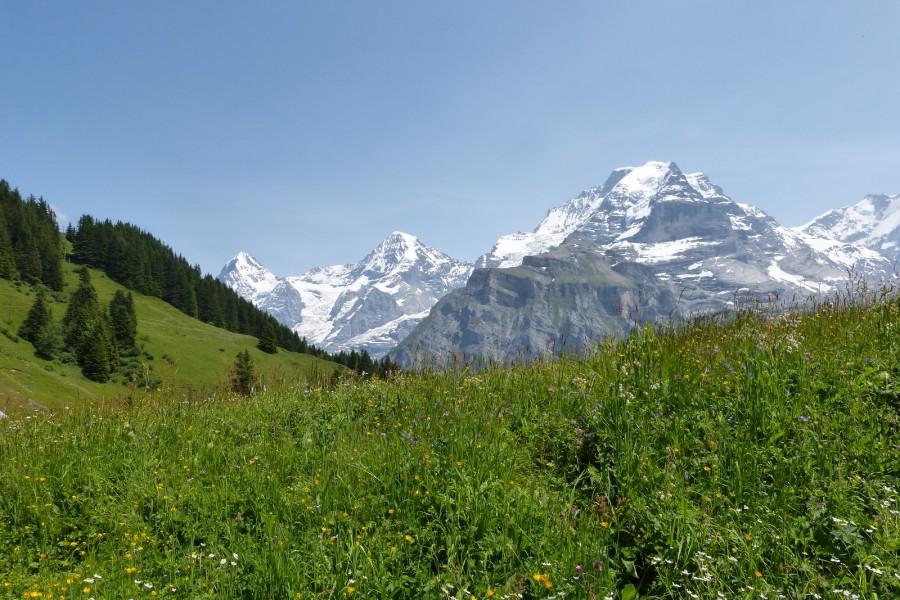 Berner Oberland, Switzerland. [1600×1067] [OS]