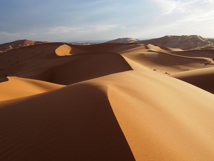 Saharan sands near Merzouga, Morocco. [1600×1200] [OC]