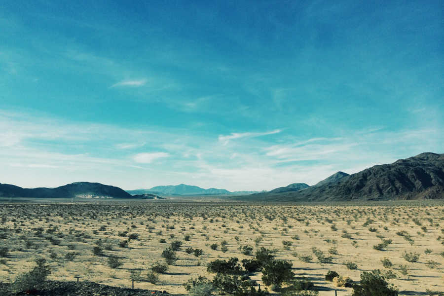 Mojave Desert, Nevada [900 x 600] [OC]