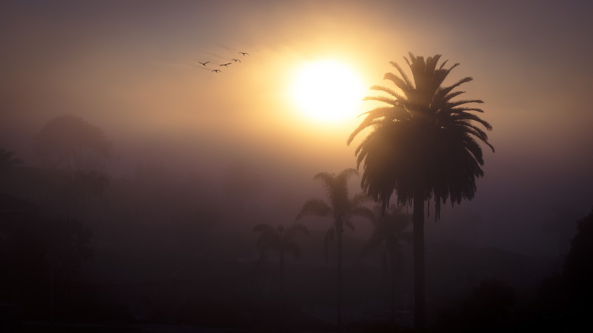 A Foggy Sunset in Point Loma, CA [2560 x 1440][OC]