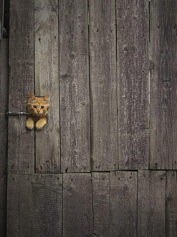 I are lock.