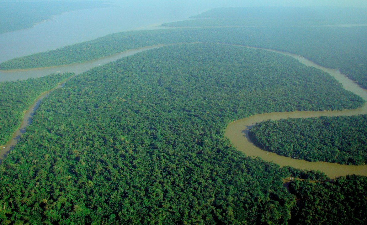 Aerial view of the Amazon Rainforest. [3450 × 2118] xpost from /r/JunglePorn