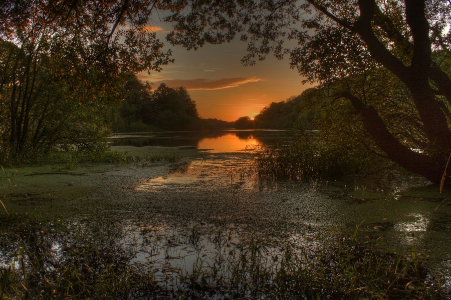 Sunset over the Quoile river, Northern Ireland(638×425)