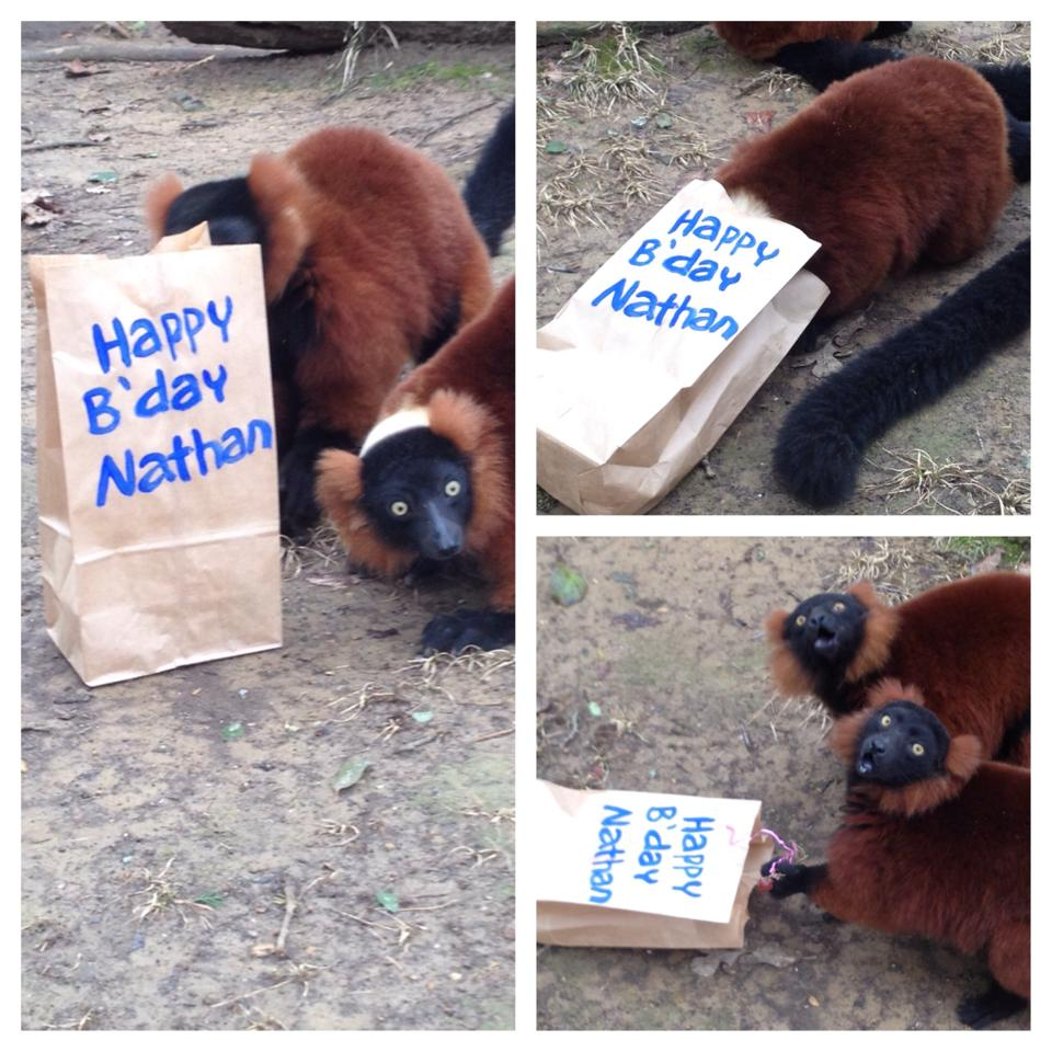My friend works at the zoo, and it's my birthday today.