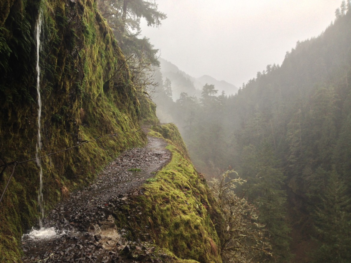 Eagle creek trail in the rain, Columbia Gorge area, Oregon, USA [3200×2400][OC]