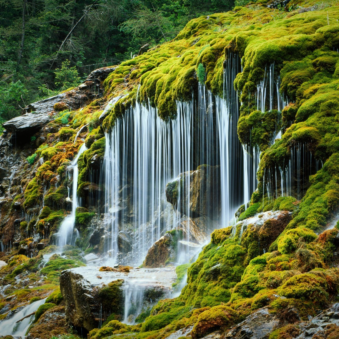 "The unique Tropfsteinquelle (roughly translates to ""dripping stone spring""), in Italian South Tyrol [2000×2000][OS] photo by Andrea Lastri"