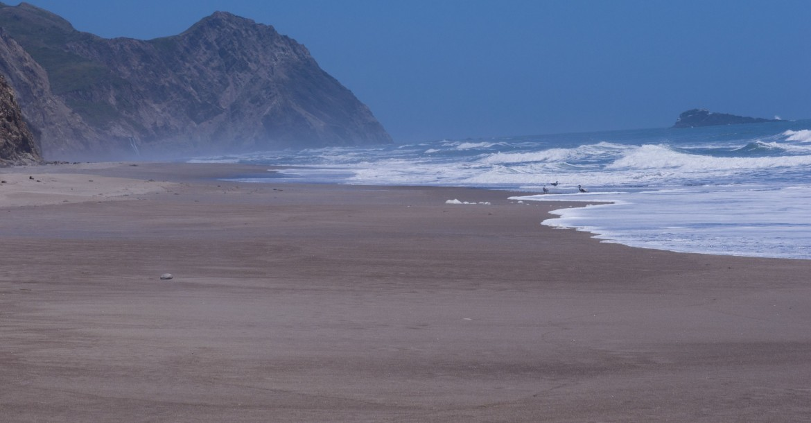 One of the many beaches along Point Reyes National Shoreline, California. Alamere Falls in the vicinity.[3859×2012] [OC]