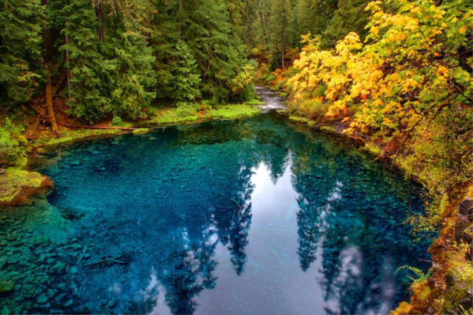 Blue Pool, McKenzie River, Oregon [920×613]
