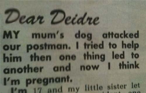 Not sure if it was the dog or postman