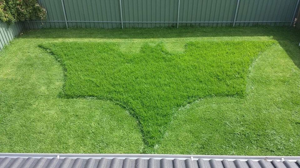 The bosses wife asked him to mow the lawn. This is what she got.