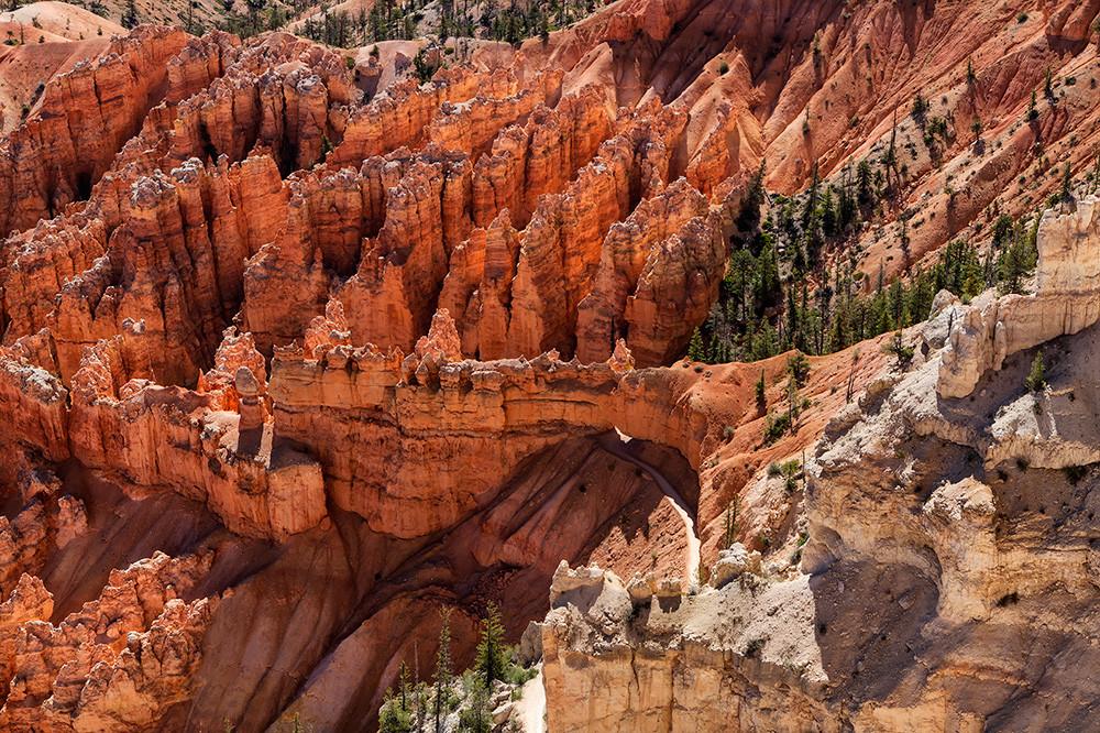 Bryce Canyon, Utah [1000×666]