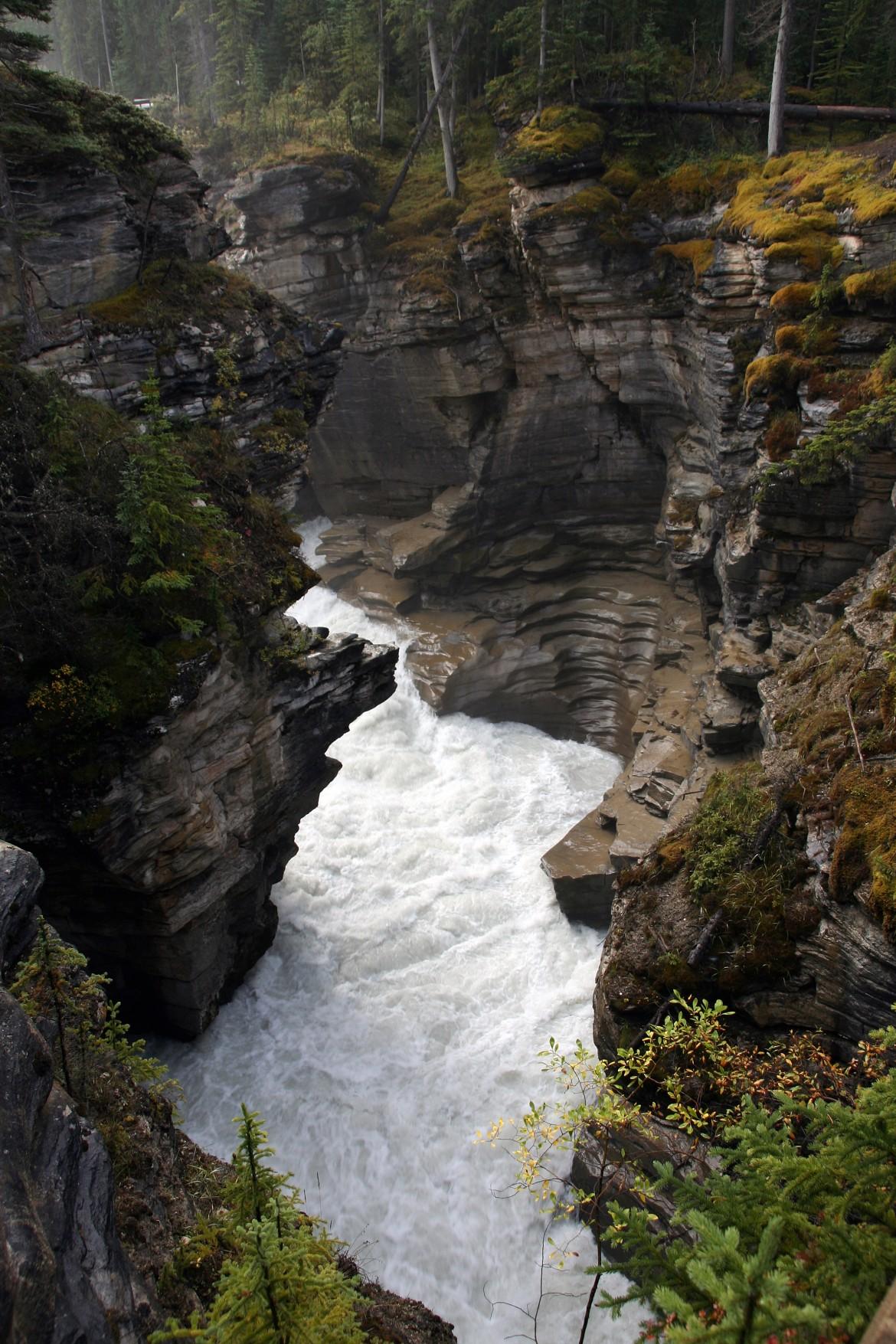 Athabasca River near Athabasca Falls [2304×3456]