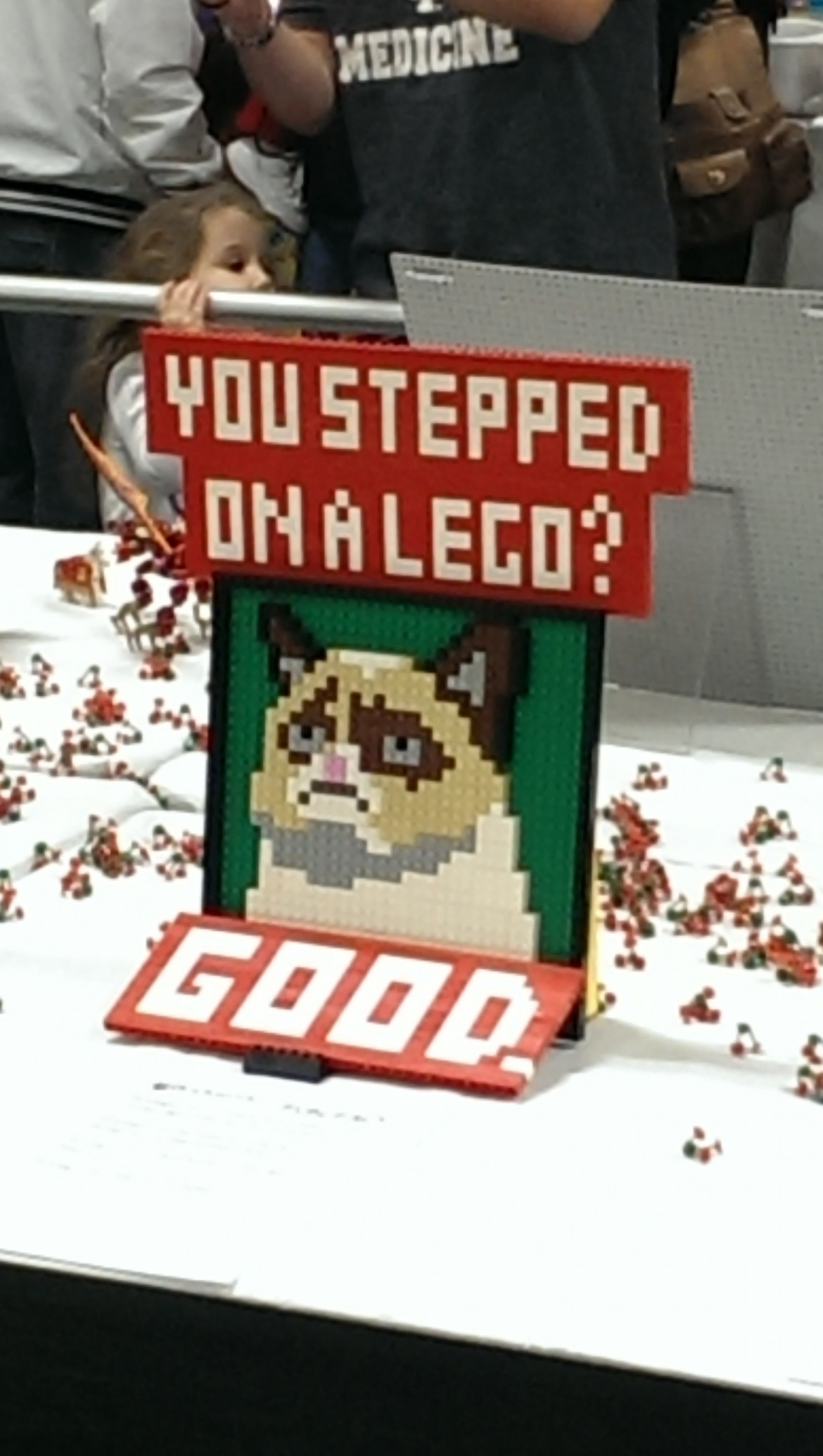 Saw this at the Lego expo today.