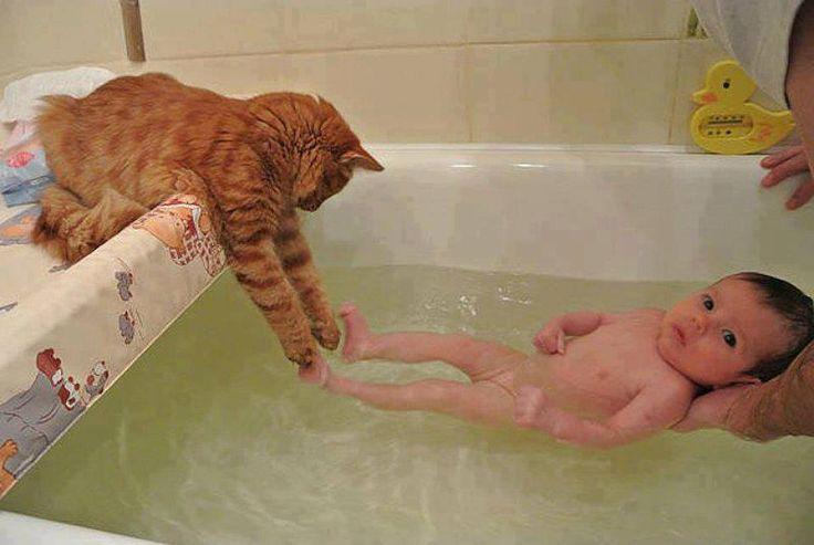 Here…I'll wash his feet.