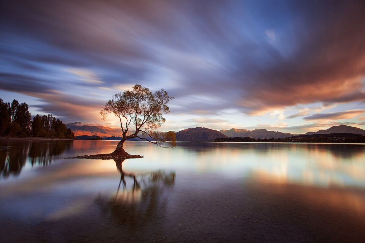 Lake Wanaka, New Zealand [1600×1066] Photographer: Rob Dickinson