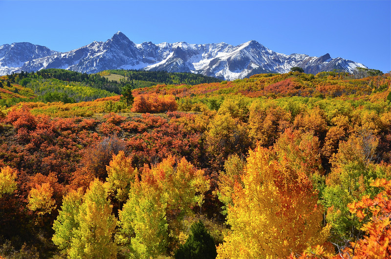 Fall Colors of Colorado [800×530]
