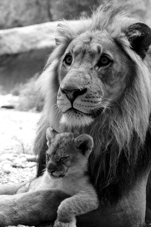 A proud dad and napping son
