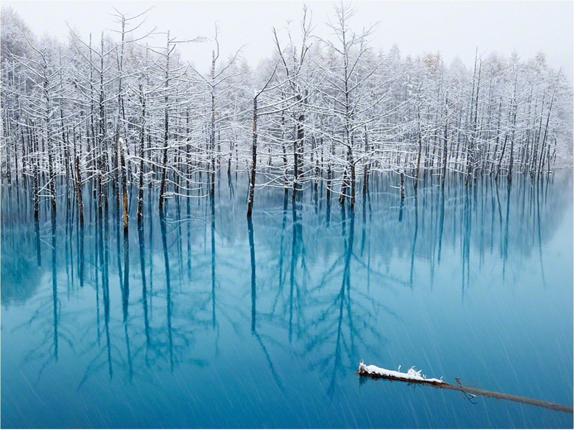 The Pond That Changes Color_ Biei in Hokkaido, Japan. By: Kent Shiraishi [1,289×968]
