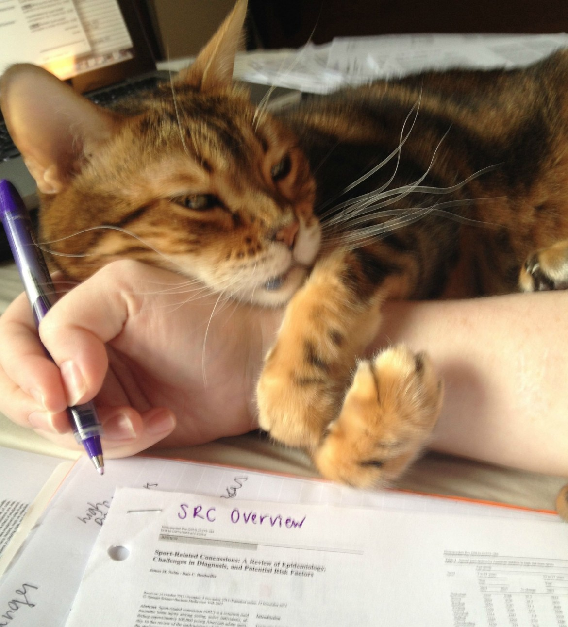 Here, let me help you with your work